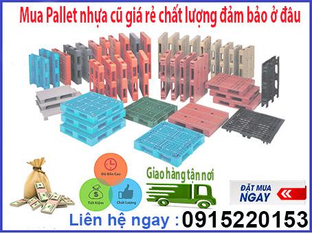 Mua Pallet nhựa cũ giá rẻ chất lượng đảm bảo ở đâu