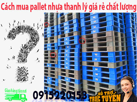 cach-mua-pallet-nhua-thanh-ly-gia-re-chat-luong
